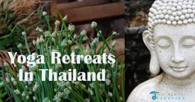 The Intelligent Way to Choose Yoga Retreats in Thailand |Yoga Holidays